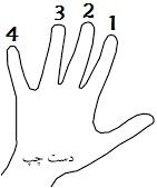 آموزش گیتار | اسامی انگشت های دست چپ در گیتار